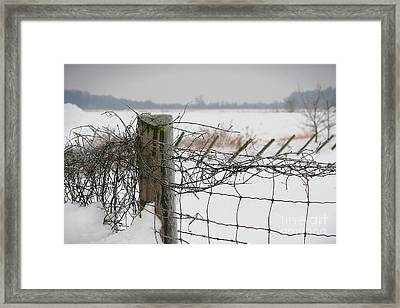 Snow Fence  Framed Print by Sandra Cunningham