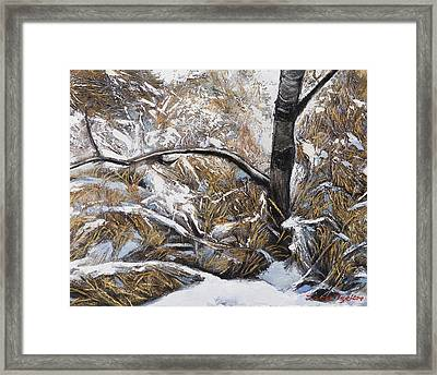 Snow Grass Framed Print by Jack Tzekov