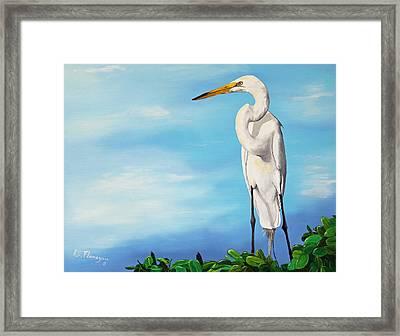 Snowy Egret Framed Print by Ruben  Flanagan
