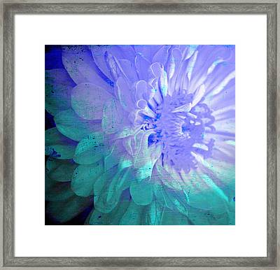 Soft Susy  Framed Print by Empty Wall