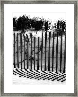Soliciting The Sand Framed Print