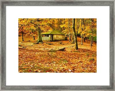 Solitude Framed Print by Darren Fisher