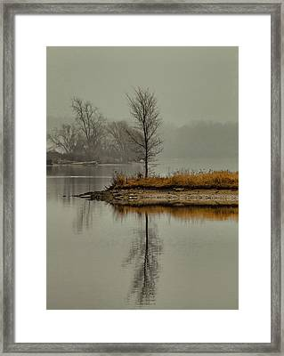 Solo Act II Framed Print