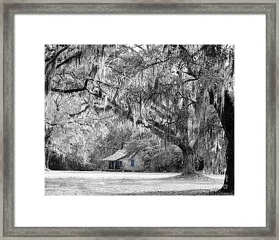 Southern Shade Selective Color Framed Print by Al Powell Photography USA