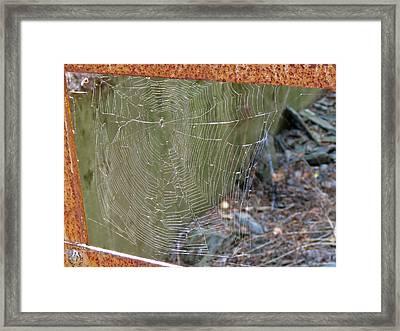 Spider Bridge Framed Print