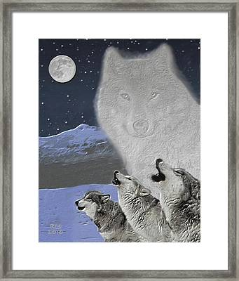 Spirit Wolf Framed Print by Richard Stevens