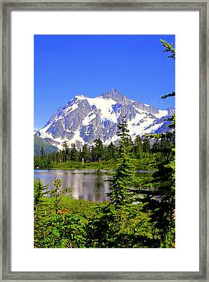 Spring In The Cascades Framed Print