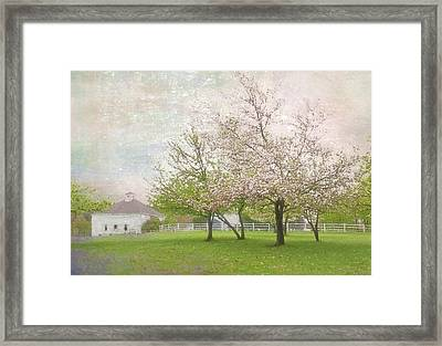 Spring Meadow Framed Print by Gordon Ripley