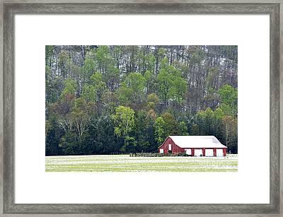 Spring Snow  Framed Print by Thomas R Fletcher