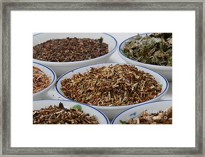 St Johns Wort Dried Herb Framed Print by Photo Researchers, Inc.