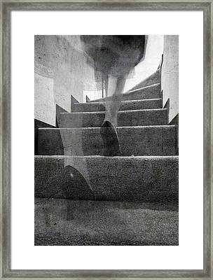 Stairs Framed Print by Laura Melis