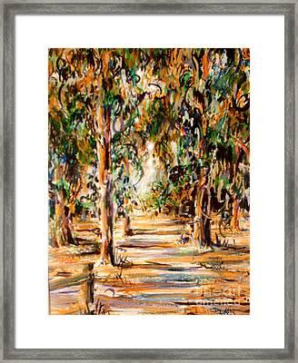 Stanford Eucalyptus Grove Framed Print by Dee Davis