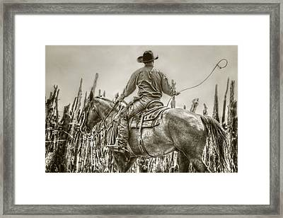 Starting A New Loop Framed Print by Megan Chambers