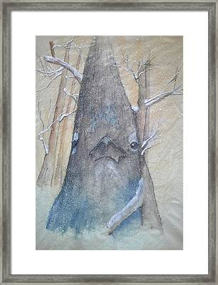 Stellar Jay From Front Framed Print by Debbi Saccomanno Chan