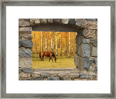 Stone Window View And Beautiful Horse Framed Print by James BO  Insogna