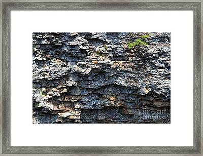 Stony Faced Framed Print by Theresa Willingham