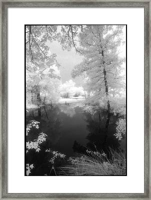 Summer At The Pond Framed Print by Greg Kopriva