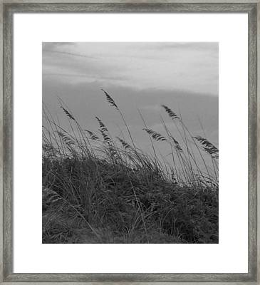 Summer Fairwell Framed Print by Stacy Sikes