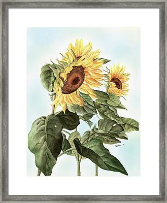 Sunflowers Framed Print by Leona Jones