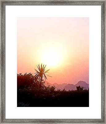 Sunset Framed Print by Amr Miqdadi