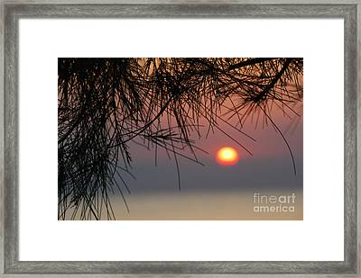 Sunset In Zanzibar Framed Print by Alan Clifford