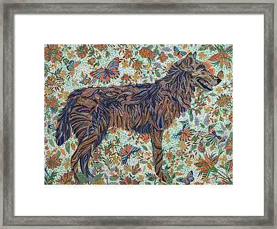 Tamed Framed Print by Erika Pochybova