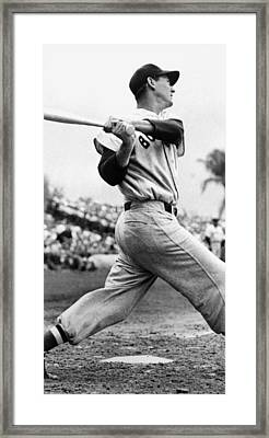 Ted Williams Of The Boston Red Sox, Ca Framed Print