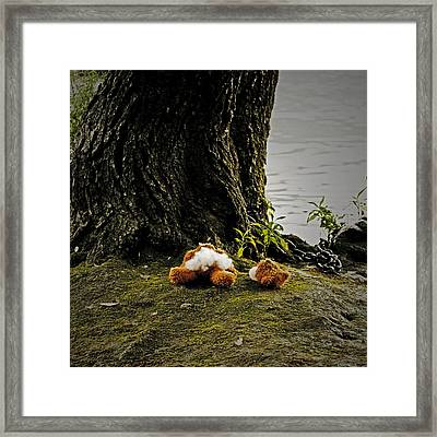 Teddy Without Head Framed Print