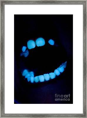 Teeth Framed Print by Ted Kinsman