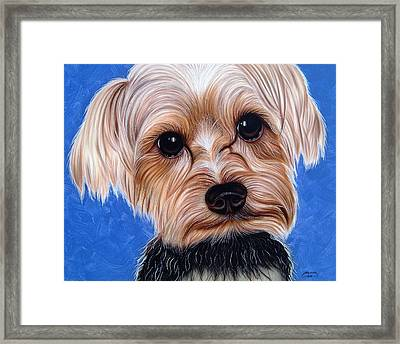 Framed Print featuring the painting Terrier by Dan Menta