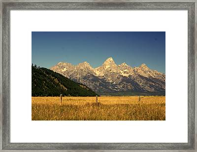Tetons 3 Framed Print by Marty Koch