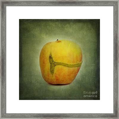 Textured Apple Framed Print by Bernard Jaubert