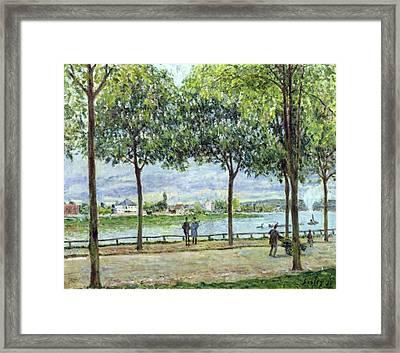 The Avenue Of Chestnut Trees Framed Print