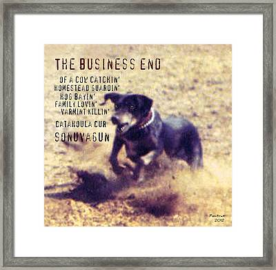 The Business End Framed Print by Poni Trax
