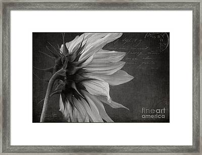 The Crossing  Framed Print