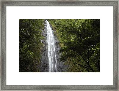 The Manoa Falls Waterfall In Honolulu Framed Print by Stacy Gold