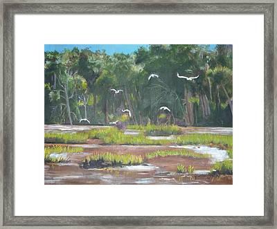 The Marshes Framed Print