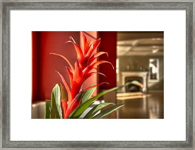 The Meadow At Falcon Ridge Residential Framed Print by Dan Kaufman