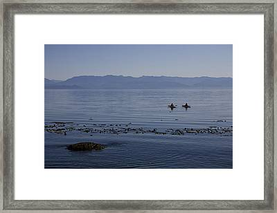 The Olympic Mountain Range Seen Framed Print by Taylor S. Kennedy