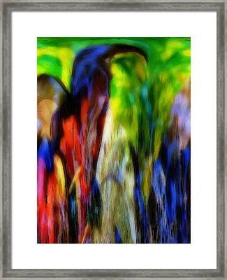 The Parrot Framed Print by Steve K