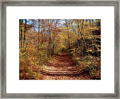 Framed Print featuring the photograph The Pepper Box by Paul Mashburn