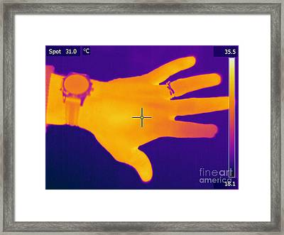 Thermogram Of A Hand Framed Print by Ted Kinsman