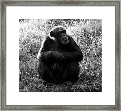 Thinking Framed Print by David Lee Thompson
