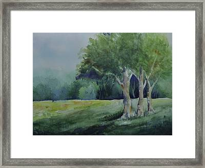 Three Sentinels Framed Print by Sandy Fisher