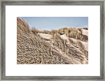 Tranquility Framed Print by Bonnie Bruno