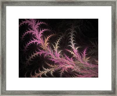 Tree Branch Framed Print by Michele Caporaso