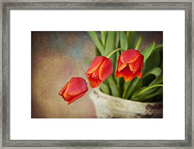 Framed Print featuring the digital art Tulip Cascade by Cheryl Davis