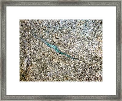 Turquoise Worm Framed Print by Robert Knight