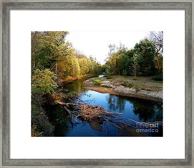 Twisted Creek Framed Print by Sue Stefanowicz