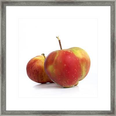 Two Apples. Framed Print by Bernard Jaubert